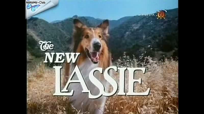 Новые приключения Лесси(1989–1991) серии37-42