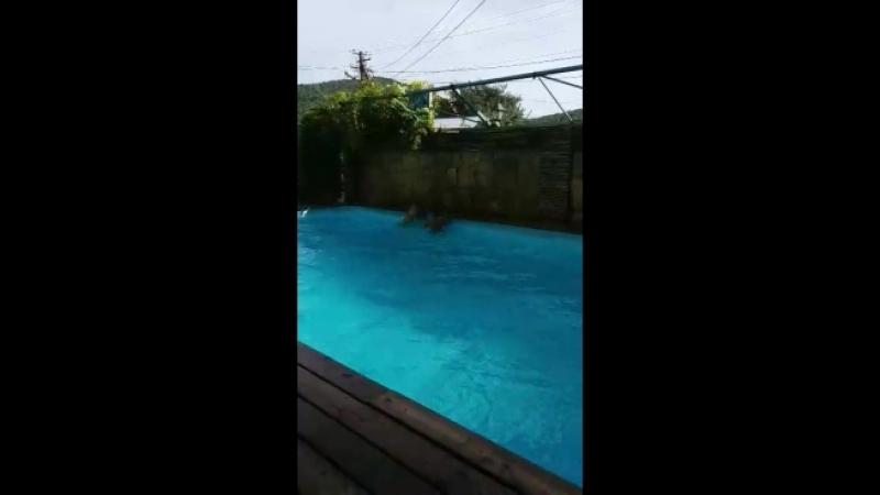 Video 4edff113fdbbaa1c7f3b3e62f1e28a99