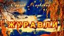 ЖУРАВЛИ есть такие друзья,что пройдут стороной и никто не поможет подняться - Сергей Маевский