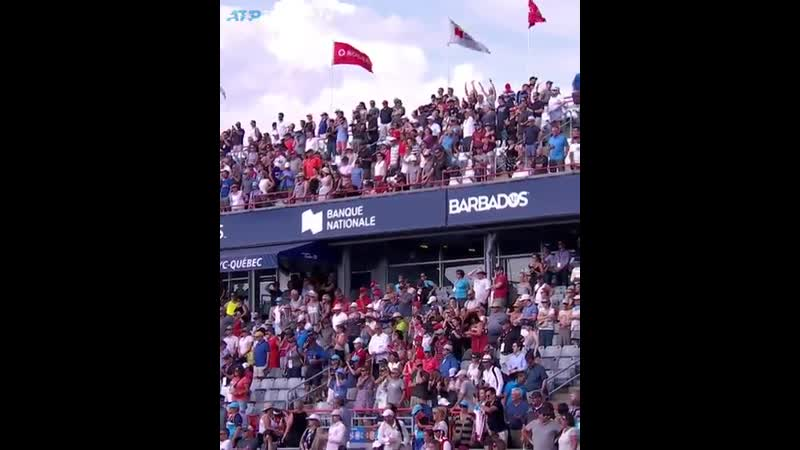 Стадион в Монреале поздравляет Оже Альяссима