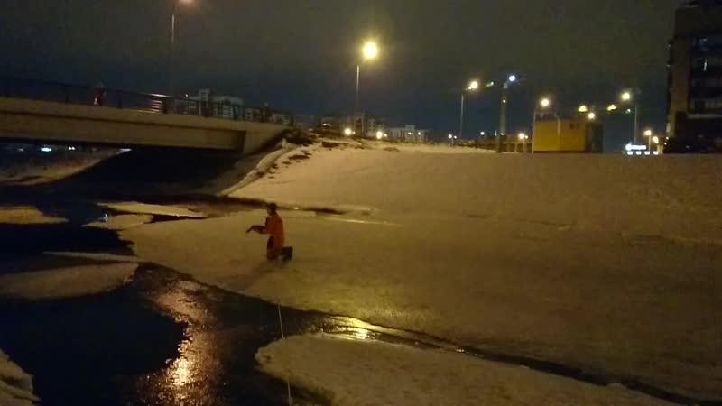 14.02.19. Достаем селезня со льда Матисова канала.
