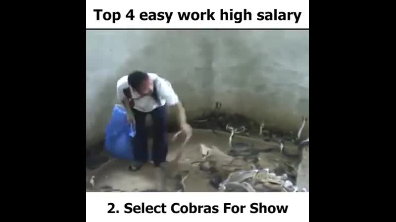 Top 4 easy work high salary