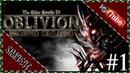 The Elder Scrolls 4 Oblivion Прохождение Чудо Бретонец Атронах 1