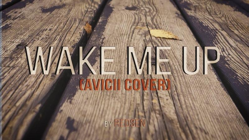 Wake Me Up (Avicii Cover) with lyrics