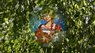 Я в весеннем лесу  Серж Лащёв   сл и муз Е Агронович
