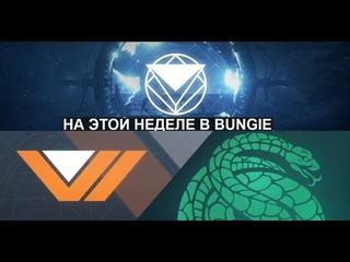 Destiny 2 На что повлияет выбор стороны(Скиталец или Авангард)Про контракты у ЗУРА