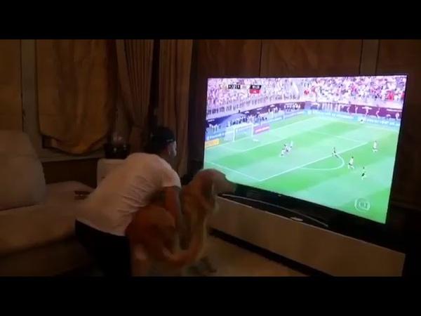 Reação do Thiago Maia ao gol do título da Libertadores do Flamengo em 2019