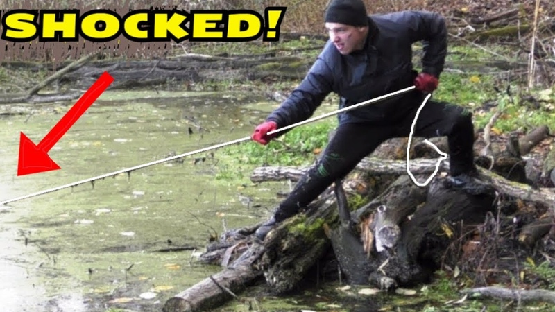 HUGE MAGNET CATCH In The Forest SWAMP! CrazySeeker!