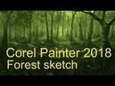 Corel Painter 2018 - Forest sketch Davey Baker
