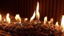 Planika Premium gas fireplaces – Dallas HPBexpo 2019 . Выставка с каминами Planika в США