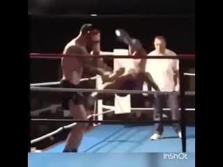 Mr.b sport knockout