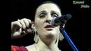 Сольный концерт Елены Ваенги в Тольятти. 05.02.2013