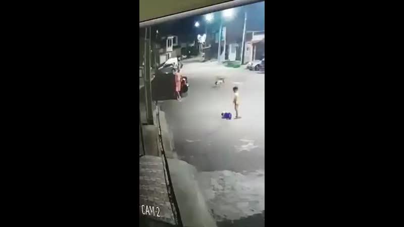 Fdp maltratando um animal