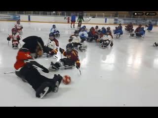 Открытый межрегиональный турнир детской следж-хоккейной лиги в Сибирском федеральном округе
