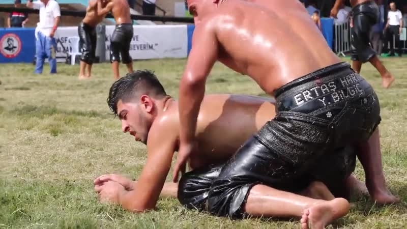 Sultans of sweat turkish oil wrestling 19