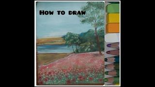 Draw the poppy field, Dessiner un champ de pavot