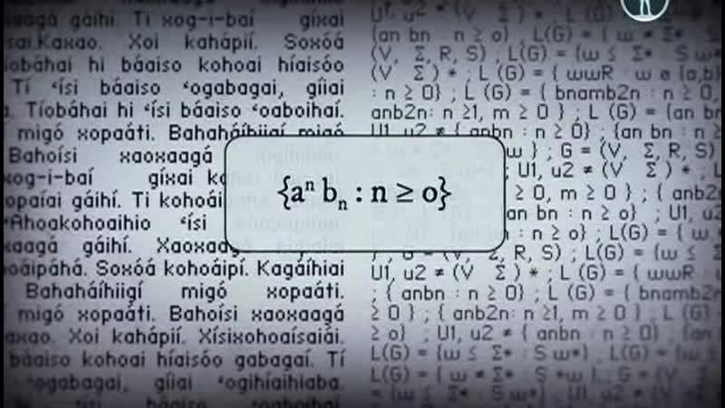 Код Амазонки Грамматика счастья