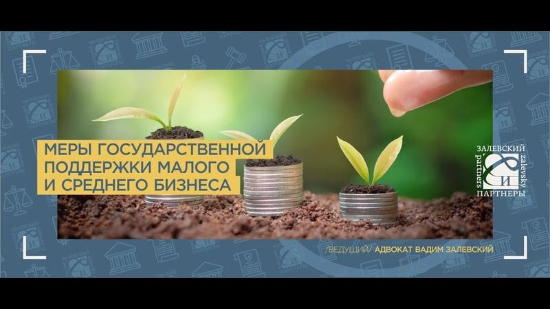 Меры государственной поддержки малого и среднего бизнеса