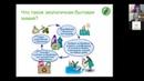 Видео экологичная бытовая химия Что это такое и как её найти