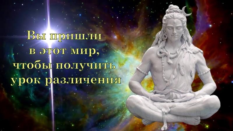 Вы пришли в этот мир чтобы получить урок различения Господь Шива