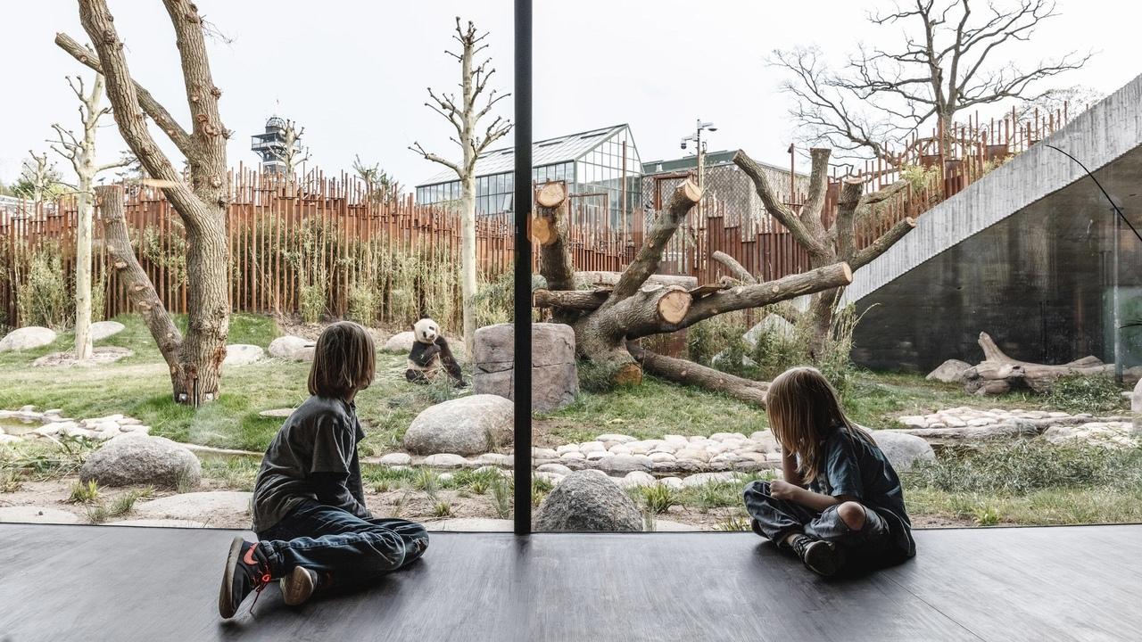 BIG completes yin-and-yang-shaped Panda House at Copenhagen Zoo