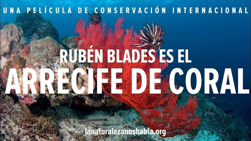 La Naturaleza Nos Habla Rubén Blades es el Arrecife de Coral