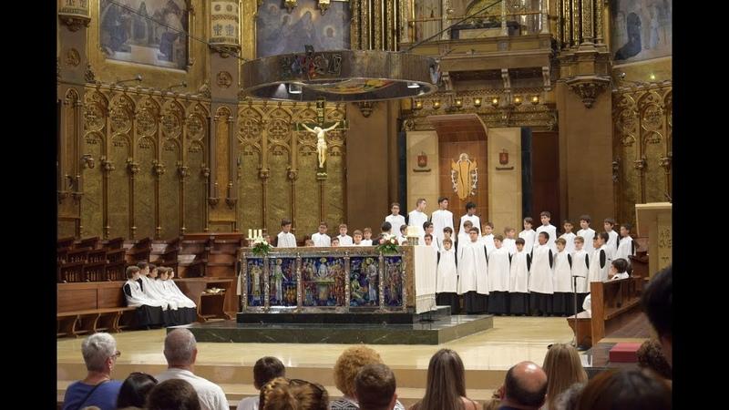 Хор мальчиков L'Escolania в монастыре Монтсеррат