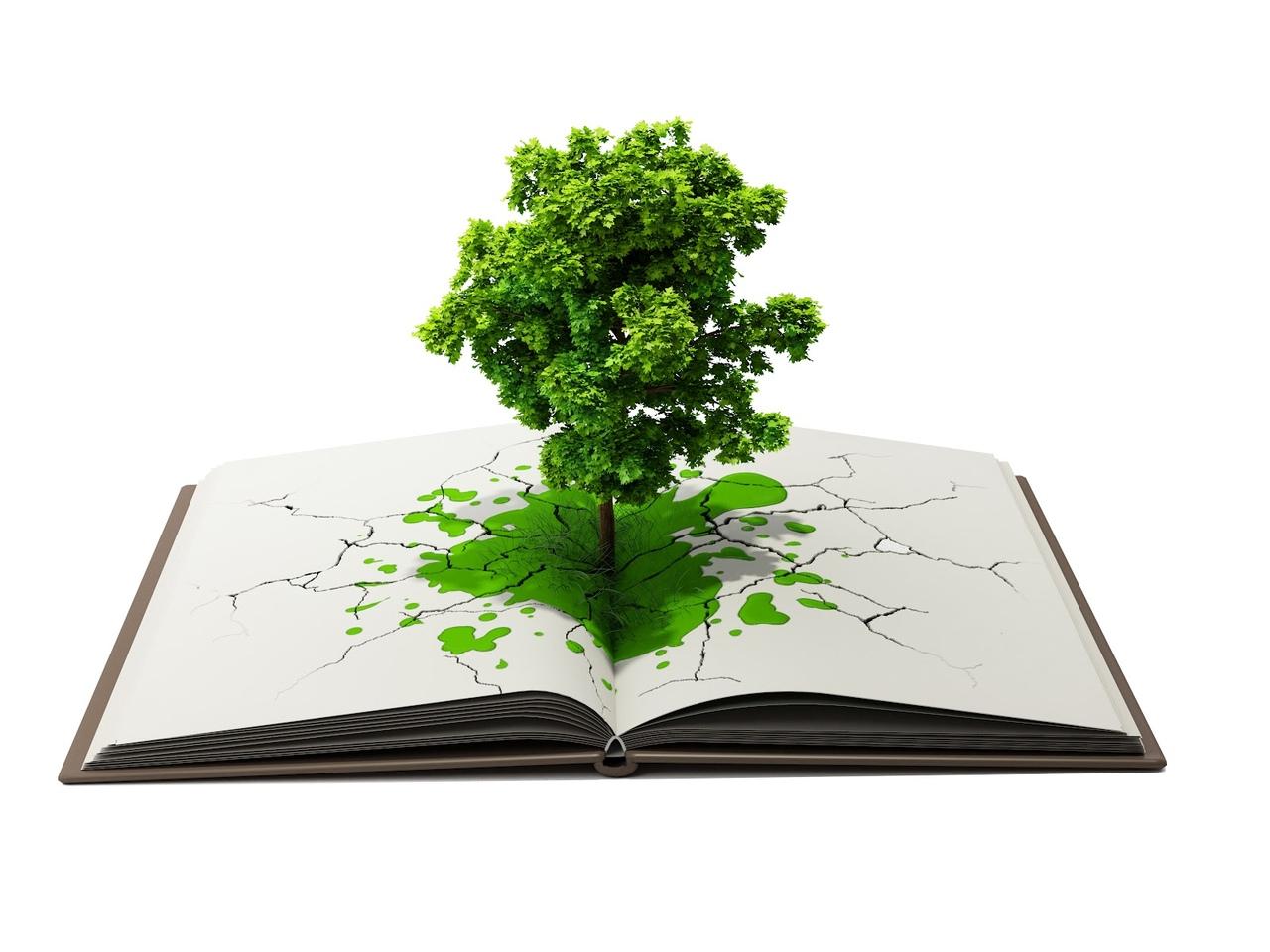 экологическая грамотность картинки