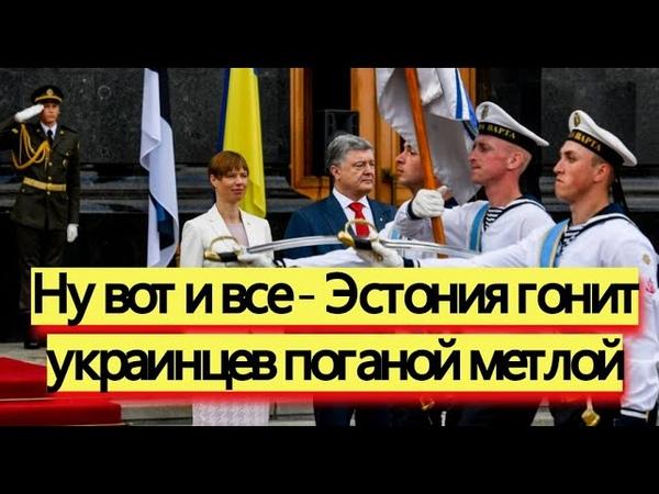 Вот это поворот Эстония погнала украинцев поганой метлой