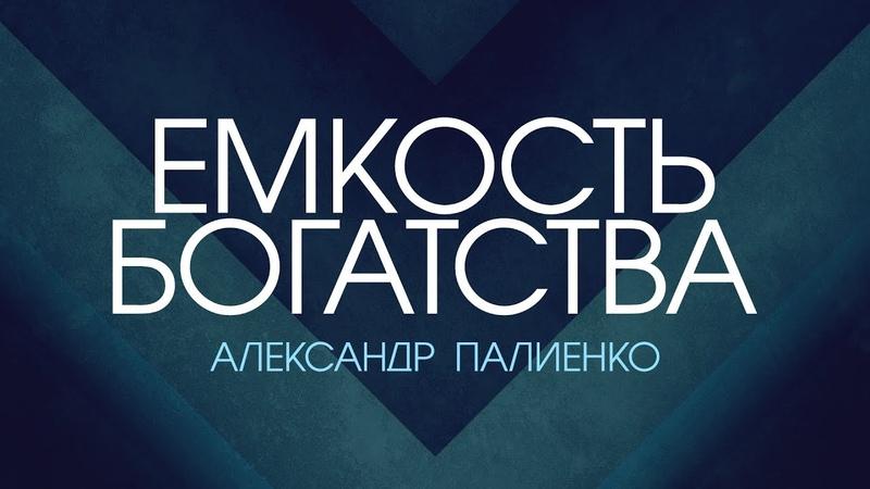 Ёмкость богатства Александр Палиенко