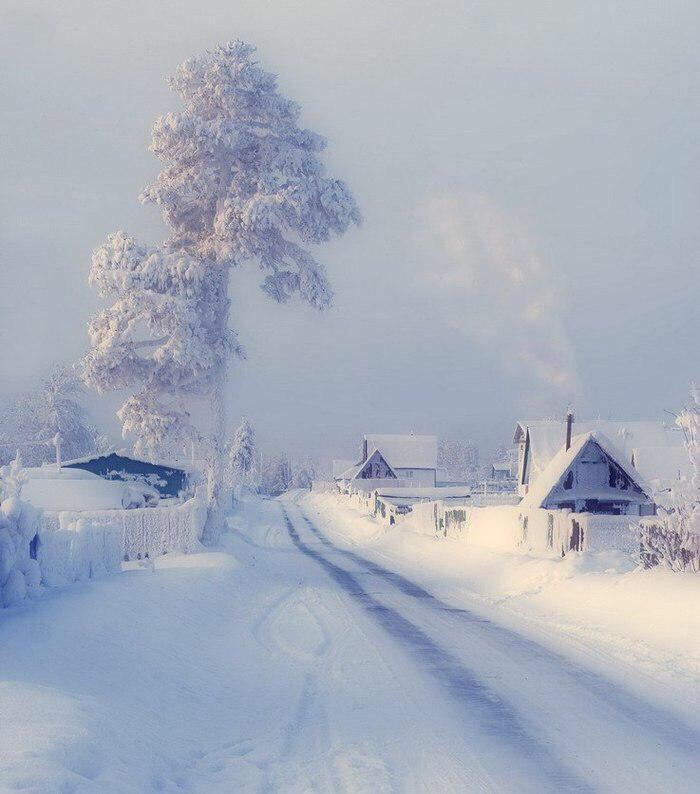 Кака зимняя сказка