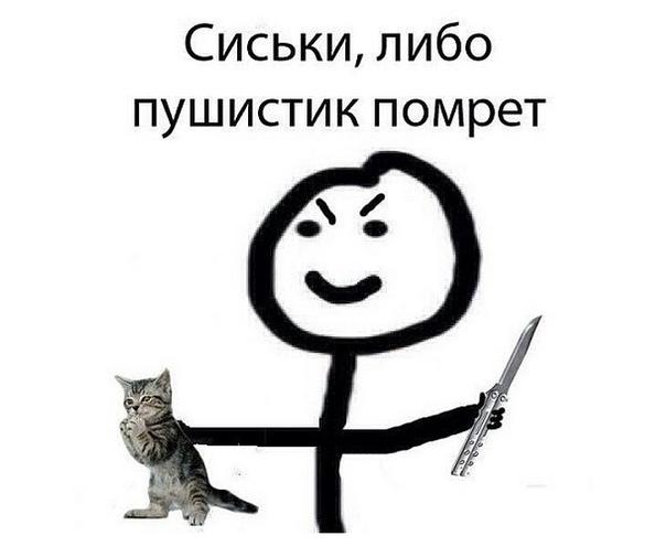 приобретаемая картинка ты умрешь кот лошадки