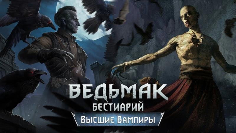 The Witcher 3 Бестиарий Высшие вампиры Регис и Скрытый