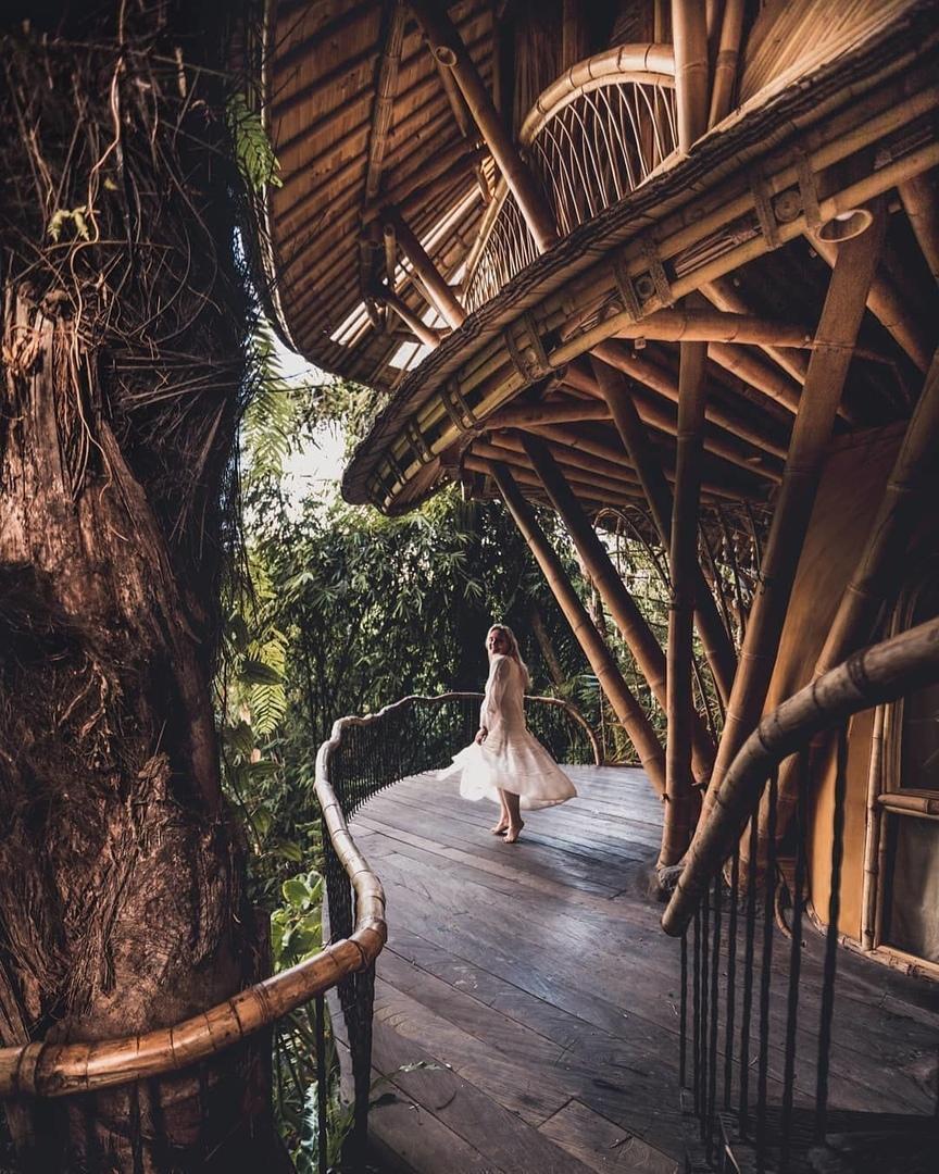 Eco bamboo на БАЛИ
