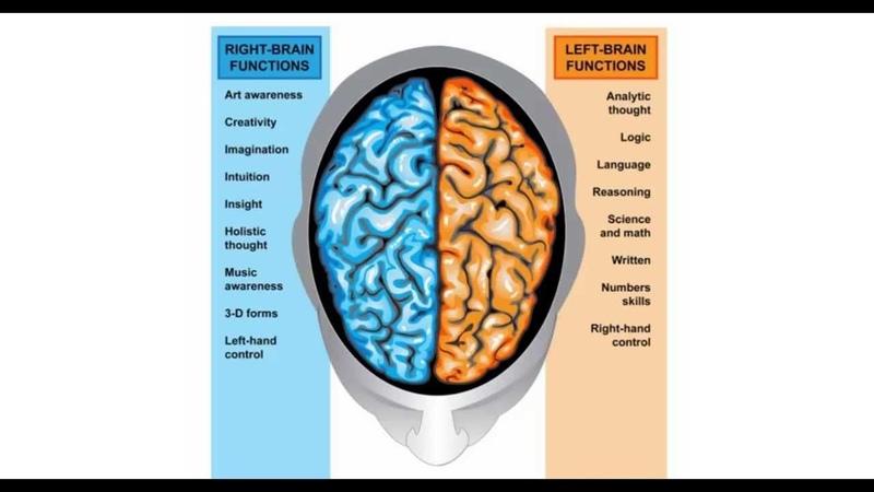 Тренируй мозг Гармонизация правого и левого полушария