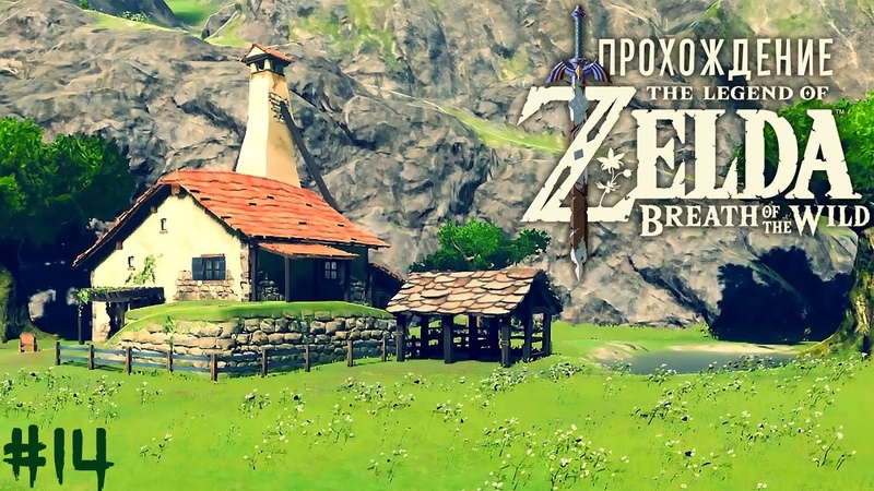Купил себе домик The Legend of Zelda Breath of the Wild 14