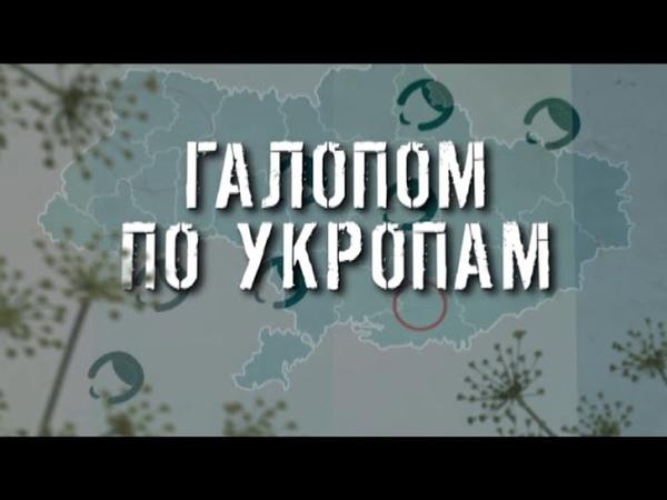 ГТРК ЛНР Галопом по укропам 17 40 26 марта 2020 год