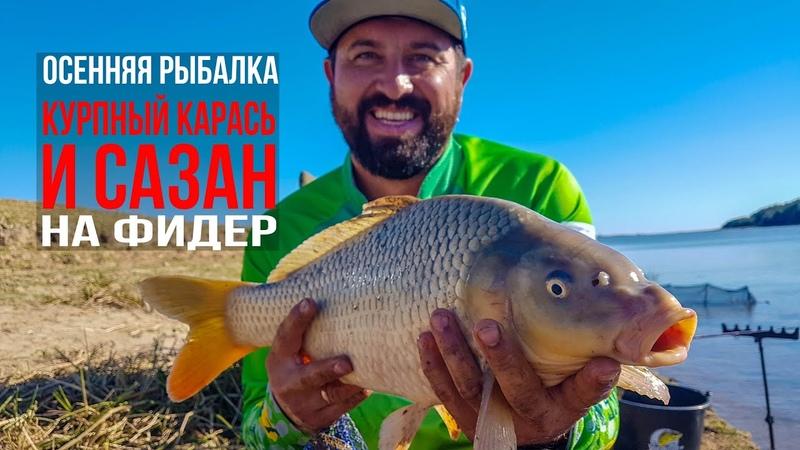 Ловля на фидер крупного карася и сазана на дикой реке Леха взял трофей Осень 2018 Vlog4 18