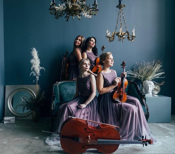 The Gay Wedding Collection Vitamin String Quartet
