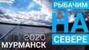 Первая Рыбалка на Севере Кольского п-ва / Флора и Фауна Севера /