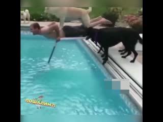Мы научим нырять тебя)
