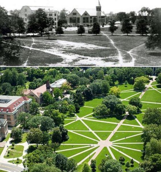 Дорожки на территории Университета штата Огайо были проложены на основе маршрутов, по которым студенты шли на занятия