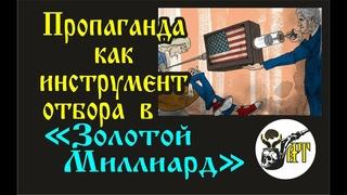 "Пропаганда как инструмент отбора в ""Золотой Миллиард"""