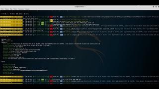 ✨Kali Linux 68 - BeEF - Запускаем простые команды на машинах жертв✨