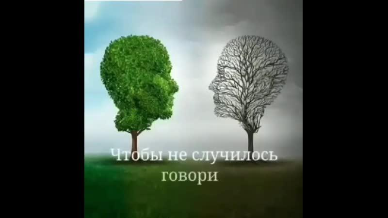 Zamiq Huseynov on Instagram_ _Shukur... --__By3oXG(MP4).mp4