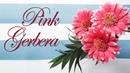 Гербера розовая / Gerbera pink diy