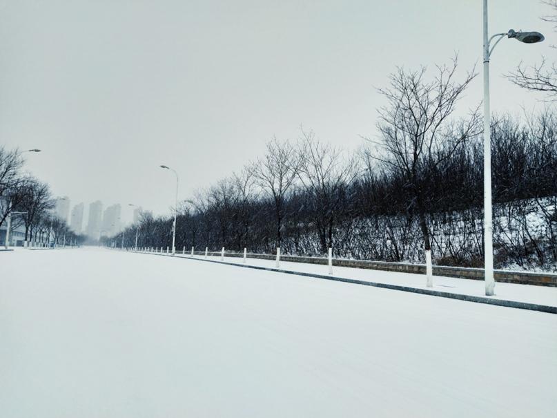Зимний кампус