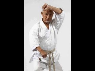 Масахико Танака сэнсэй - излюбленные техники