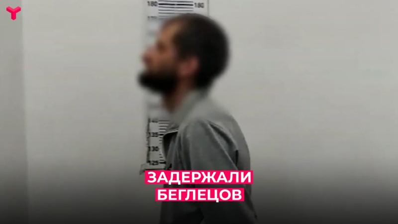 В Тюменской области сотрудники ГИБДД задержали беглеца из Новосибирска