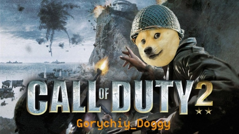 Call of Duty 2 Бессмертная классика 1 Gorychiy Doggy